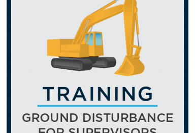 Training Course Icons