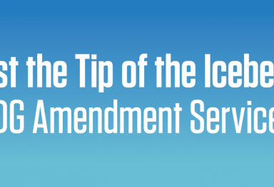 Just the Tip of the Iceberg: TDG Amendment Services